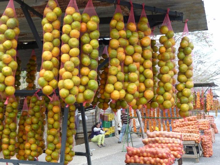 Naranjas yaracuyanas_SilviaDubuc